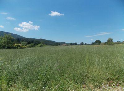 Le Coteau de Favard : terrain de 616 m²